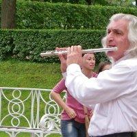 Волшебная сила мелодии.......( вар. 2 ) :: Святец Вячеслав