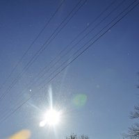Мороз и солнце; день чудесный! :: Вика К.