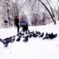Голод не тетка! :: Анатолий Бугаев