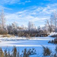Зимнее утро :: Мария Богуславская
