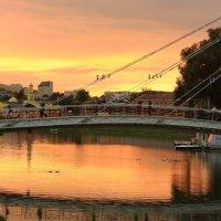 Лодки и уточки в апельсинах    ) :: Ирина Сивовол