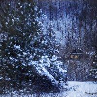 Мороз крепчает. Рождество приближается :: Denis Makarenko