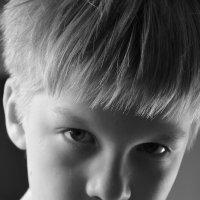 Летний портрет мальчика :: Олег Синица