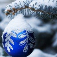 первый снег! :: Tatiana Florinzza
