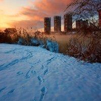 Зима на Кубани :: Ирина Лядова
