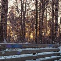 Красивый парк, милые люди оставляют в нем следы. :: cfysx