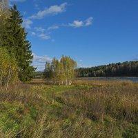 осень на реке Яхрома :: Moscow.Salnikov Сальников Сергей Георгиевич