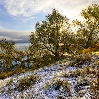 Берег озера Куяш. Первый снег :: Мария Кухта