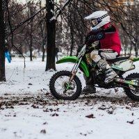 Правильное воспитание :: Валерия Потапенкова