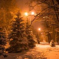 зимняя сказка :: Наталья М