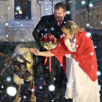 свадьба :: Стелла