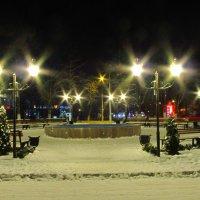 Заснеженный Клушинский сквер, Измаил. Украина :: Жанна Романова