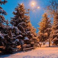 Волгоград в преддверии Рождества :: Иван Синицарь