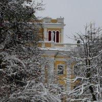 зимний парк Гомеля :: Александр Прокудин