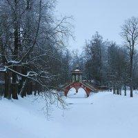Зима Александровского парка.... :: Tatiana Markova