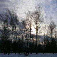 Январские закаты... :: Алёна Савина