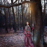 предновогодний лес :: Маргарита Комаровская