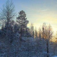 Зима... :: Анатолий Антонов