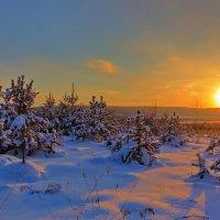 На заходе солнца :: Анатолий Иргл