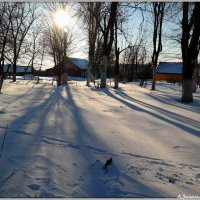 Утро морозное :: Андрей Заломленков