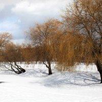 Минск. Старое фото. :: Ksy КорСор