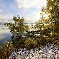 Утро у озера :: Мария Кухта