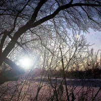 Январь. Прекрасная пора. Начало года и зима ... :: Евгений Юрков