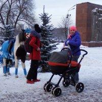 Зимние прогулки . :: Лара ***