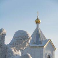 лик ангела :: Sergey Samoylov