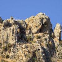 Горы Израиля :: Александр Деревяшкин