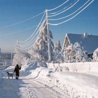 Мороз и солнце; день чудесный... :: Владимир Чуприков