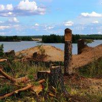 Памятник убитому Лесу :: Иван Миронов