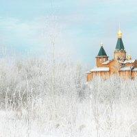 Новая. :: Наталья Сергеева
