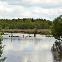 Отдых на берегу реки :: Julia Pr.