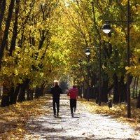 Осенняя пробежка в парке :: Юлия Жогина