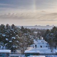 Морозным днем в парке :: Сергей С