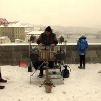 Рождественские концерты :: Ольга
