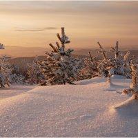 Вечер января :: Владимир Тюменцев