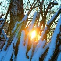 #Зима#Закат.. :: Екатерина Ермилова