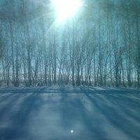Кружева. :: Елена Данилычева