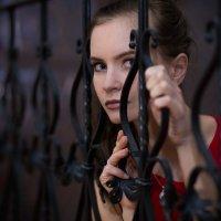 Девушка на лестнице :: Анита Гавриш