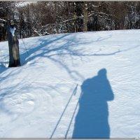 Тени в морозный день :: Андрей Заломленков