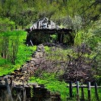 старый дом :: Денис Третьяков