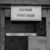 чб :: Заурбек Джанаев