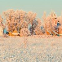 Мороз и солнце; день чудесный! :: Ирина Никифорова