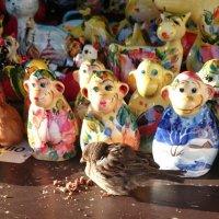 Где обедал воробей?.. Это, конечно, не зоопарк, но лица знакомые. :: Galina194701