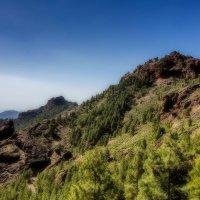 Spain 2015 Canary Gran Canaria 7 :: Arturs Ancans