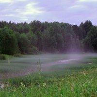 Белая ночь. Туман. :: Nikolay Zinoviev