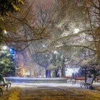 Зиний вечер в парке :: Женечка Зяленая