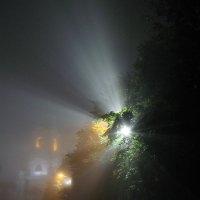 в тумане :: tatiana lanskaya